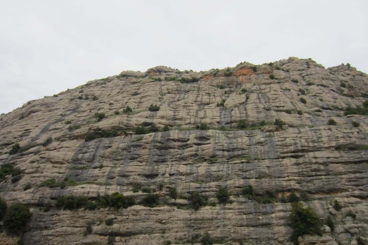 Aragon_000327