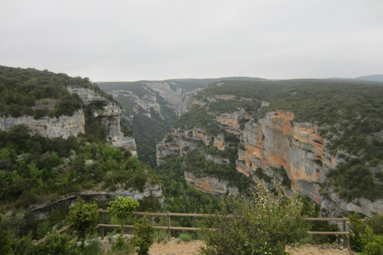 Aragon_000362